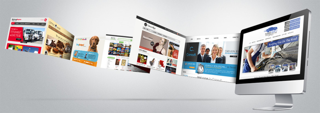 Professional Responsive Business Website
